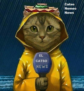 Mr President El Catso reporting live from Brussels South West, as the Pacific Hurricane makes landfall.